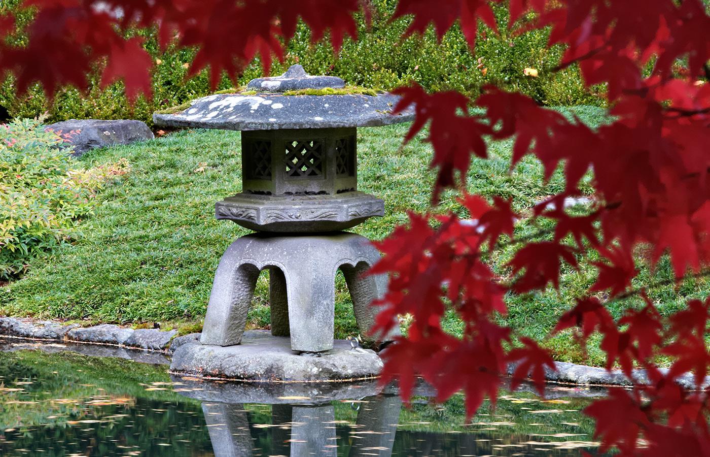 Home Page UBC Botanical Garden