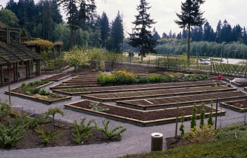 Food Garden featured in UN Food Gardens' Feed Your City Showcase