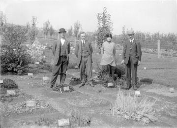 The Original Botanical Office staff at botanical garden, circa 1913-1915
