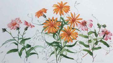 Taylor-Art-Auction_3-mutissias_700x394