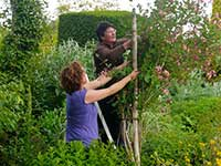 Horticulture Training at the Garden