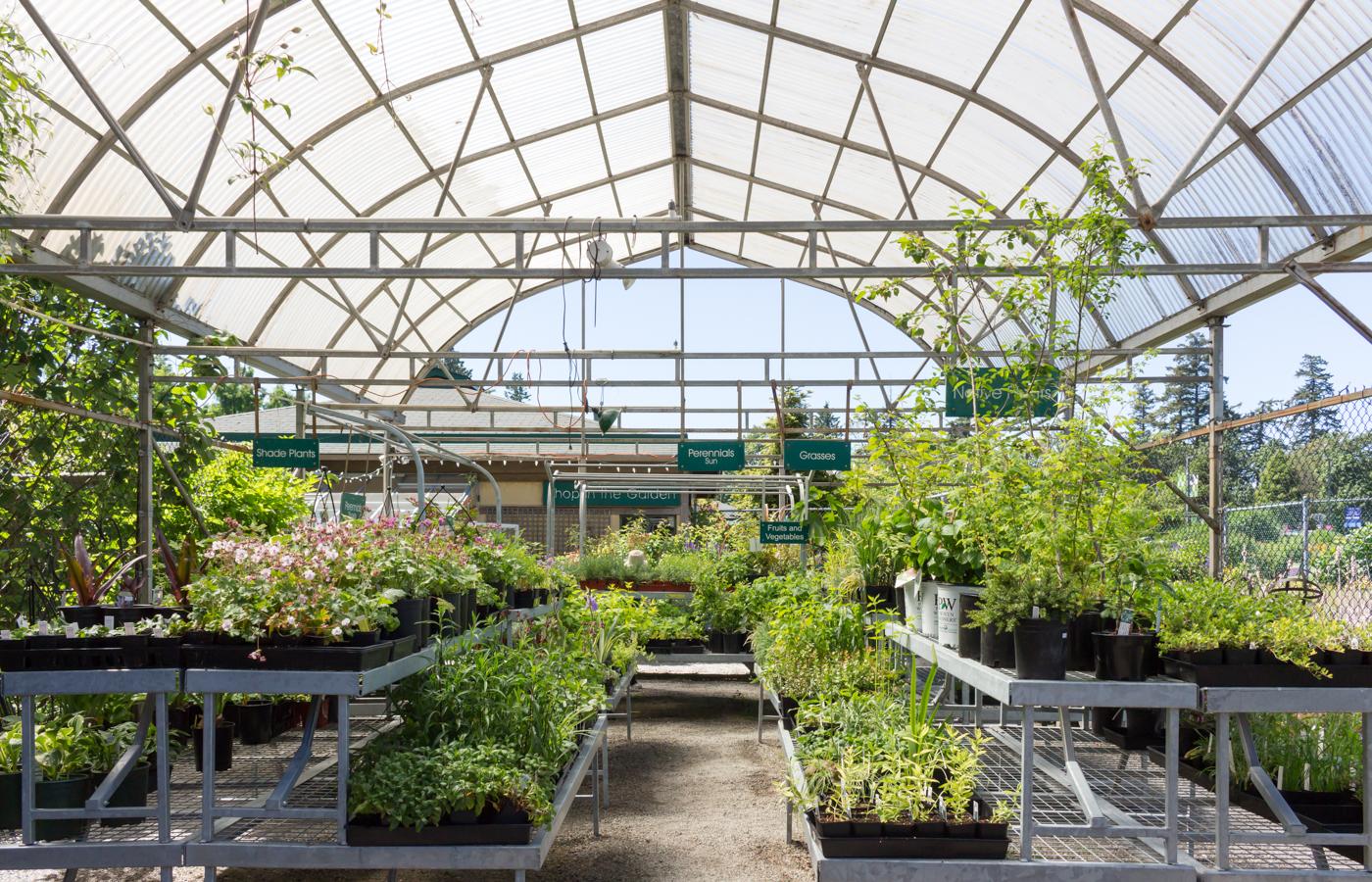 Shop Garden Centre Ubc Botanical Garden