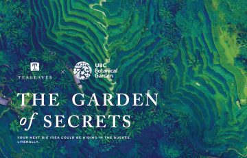 "Virtual Tea & Talk: ""The Garden of Secrets"" Recap"