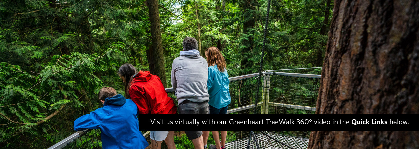 Greenheart TreeWalk virtual tour