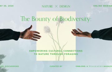 Virtual Talk Recap: The Bounty of Biodiversity