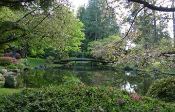 Nitobe Memorial Garden Re-opens July 15, 2020